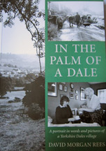 In The Palm of a Dale Book Cover