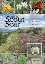 About Scout Scar Book Cover