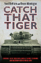 Catch That Tiger Book Cover